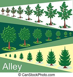 Vector alley illustration. Green trees In the alley
