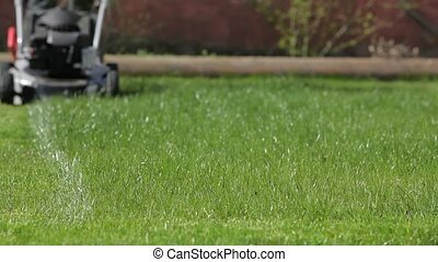 Regular Mowing The Lawn Green - The owner of the house cuts...