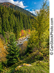 powerful mountain brook with rocky shore in valley. lovely...