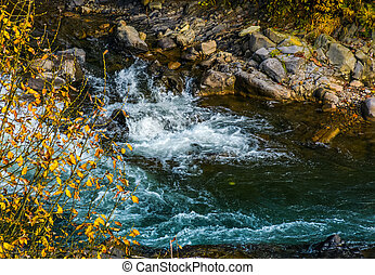 powerful mountain brook with rocky shore. lovely autumnal...