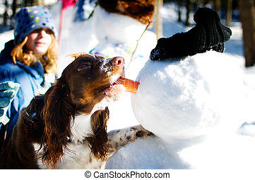 dog stealing a snowmans nose - cute dog taking the carrot...