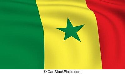 Flying Flag of SENEGAL | LOOPED |
