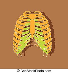 chest thorax paper sticker on stylish background