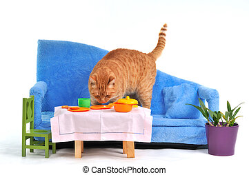 Cat on Sofa - Cat on sofa grabbing food from table