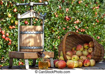 Freshly pressed Apple Juice - Some Apple gets pressed to a...