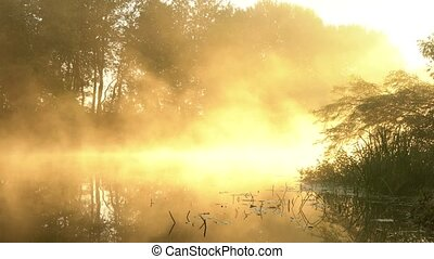 Fog over the calm river at dawn