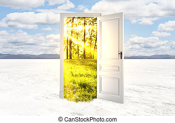 Freedom concept - Abstract open door with summer landscape...