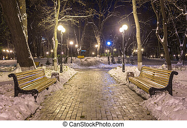 Winter night landscape- bench under trees and shining street...