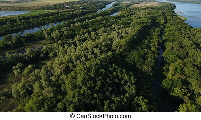 Aerial shot of the Dnipro river basin with rows of wild...
