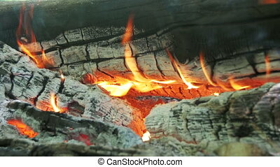 Campfire of the Branches Burn in the Forest. Burning logs in...