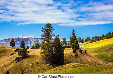 Rocks around the Dolomites - The Alps di Siusi. Well-known...