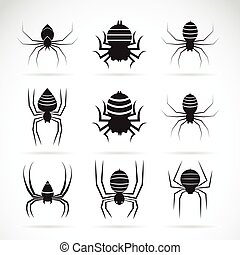 Vector group of spiders on white background. Insect.