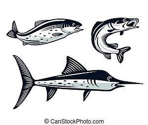Vintage Fish Logo Set Illustration
