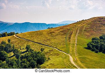path through grassy meadows on mountain ridge. lovely alpine...