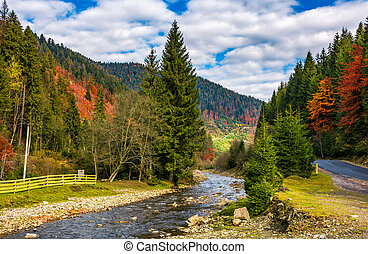 river in autumnal countryside with spruce forest. wooden...