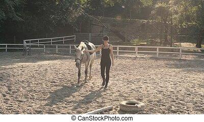 Horse Riding in the Summer Forest - Horse Mane. Horse...