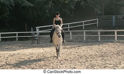 Caring for the Animal - Horse Mane. Horse Silhouette....