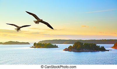 Water landscape with flying seagulls - Water landscape with...