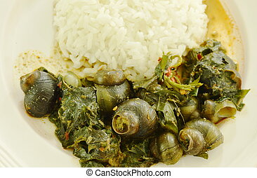 spicy pond snail and Indian mulberry red curry eat couple...