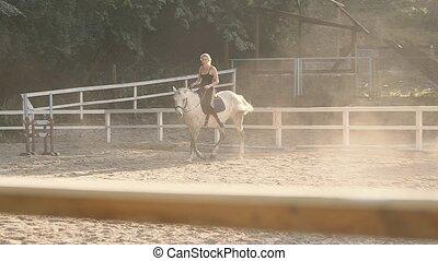 Horse Riding On the Training Ground - Horse Mane. Horse...