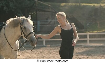 Caring for the Animal - Graceful Horse. Horse Riding in the...