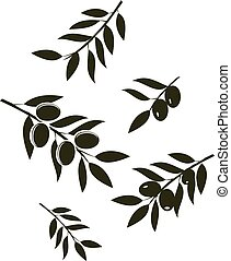 olives - vector olive branches