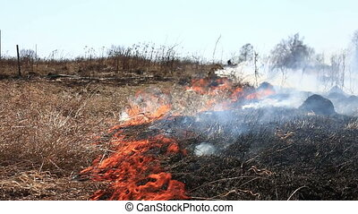 Burning dry grass, dangerous fast-moving fire.