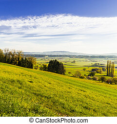 Pastures and meadows in Switzerland
