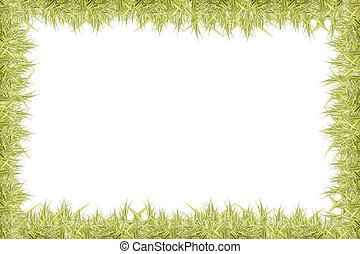 Leaf isolated - frame Leaf isolated on white background