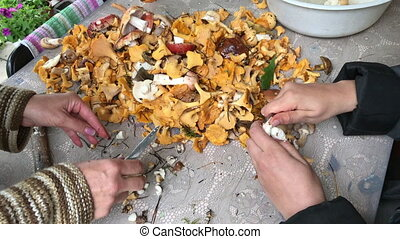 Two women pick and clean collected in the forest mushrooms.