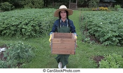 Female gardener carry box in the garden