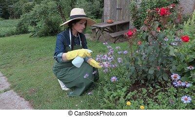 Female gardener with spraying bottle near flowers