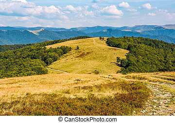 landscape with alpine meadow and mountain ridge - path...