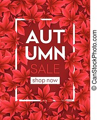 Autumn Sale background with Fall leaves. Vector illustration