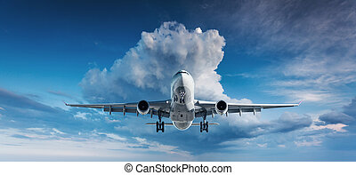 Landscape with white passenger airplane is flying in the...