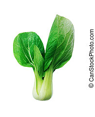 Shanghai Bok Choy isolated on white background