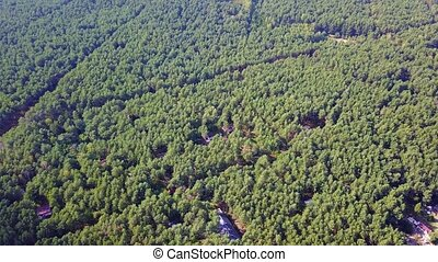 Buildings in rural woods - Drone shot of evergreen tree tops...