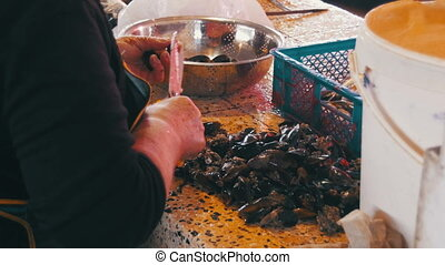 Fish Vendor Scaling and Cutting Mussels in Market Stall....