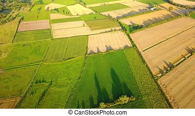 Picturesque view of green farmland - Picturesque aerial...