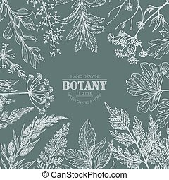 Vector frame with hand drawn herb and wildflower elements