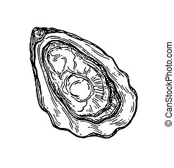 Oyster ink sketch. Isolated on white background. Hand drawn...