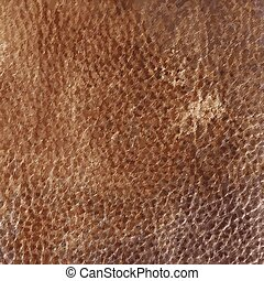 Leather texture - vector background - Brown vintage Leather...