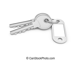 3d rendering of two isolated silver keys on a key ring with...