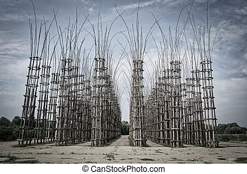 Lodi (Lombardy, Italy): the vegetal cathedral - The so...