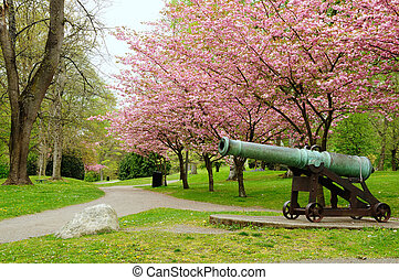 Cannon park - Once a battlefield, now a beautiful park,...