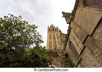 Seville Cathedral and the Giralda views from the garden of...