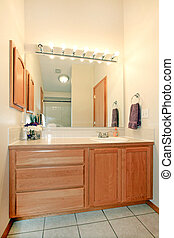 Bathroom cabinets - simple bathroom with maple cabinets...