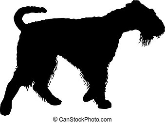 Airedale terrier dog silhouette on a white background.
