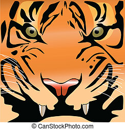 tiger face color vector illustration