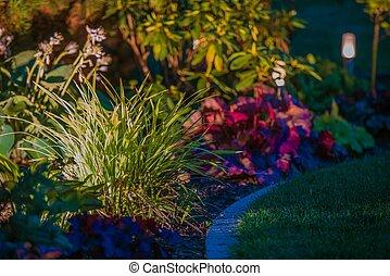Garden Night Time Lighting. Illuminated Garden Plants.